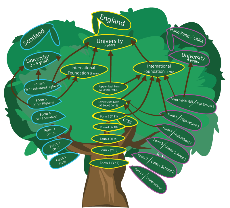 uk education system tree